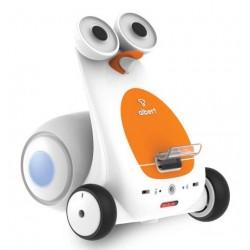 Albert Smart Robot